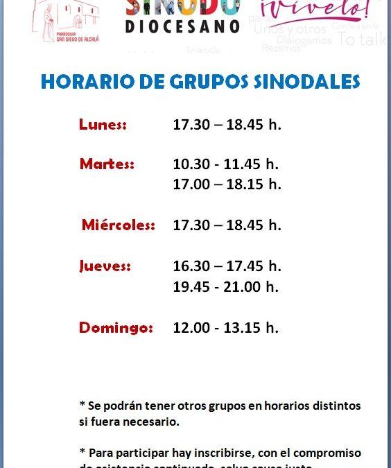 HORARIOS GRUPOS SINODALES